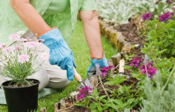 Home Care Client Gardening